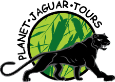 Planet Jaguar Tours